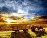 Spring Forward! - Antique Tractor Blog